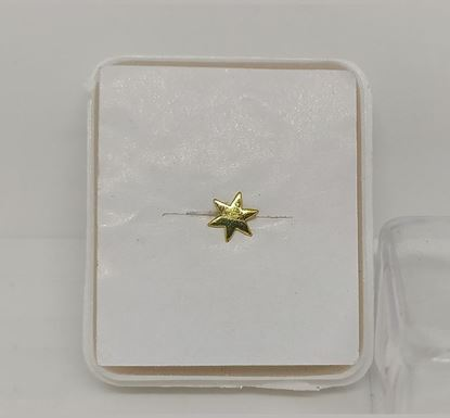 Gold Plated Nose Pin TR-996