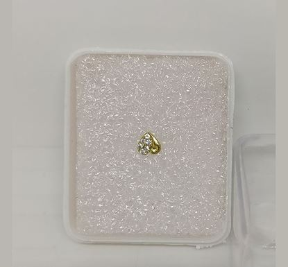 Gold Plated Nose Pin TR-1009