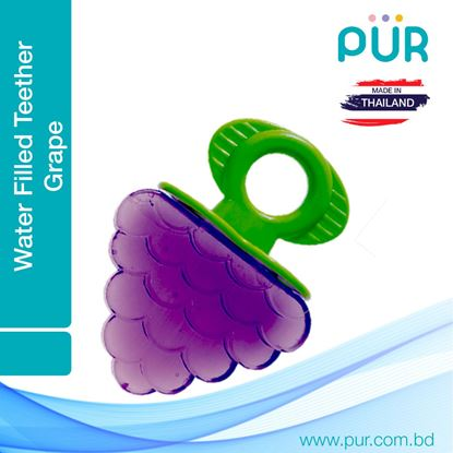 Pur Water Filled Teether – Fruit Shaped - (8007) (Grape)