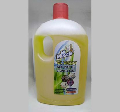 Mr. Muscle Antiseptic Disinfectant 1 L