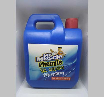 Mr Muscle Phenyle 3 L