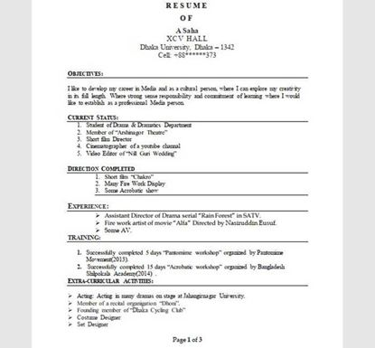 3 Pages Word Professional Resume Template - 13540011