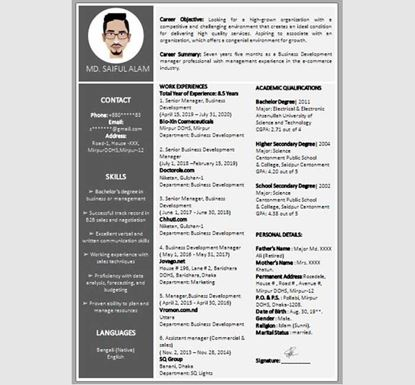 Professional PowerPoint Resume - 13540022