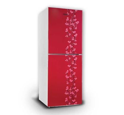 Vision Refrigerator RE-222L Red Lily Flower - 823325