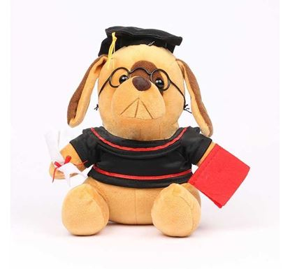 Dr. Dog 8 Inch Soft Toy-01/8in