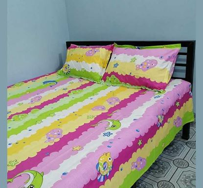 King Size Cotton Bed Sheet with Two Pillow Covers B-388