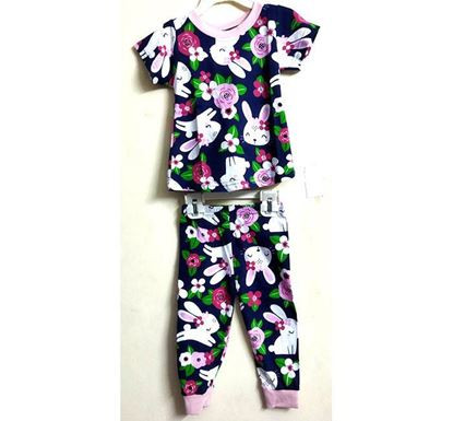 Half Sleeve T-shirt with Pant Dress Set for Kids PS-503